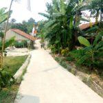 Kepala Desa Iwul, Waru Dan Jambon Mekar Bogor Tengah Membangun Jalan Lingkungan.